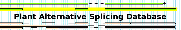 Plant Alternative Splicing Database